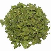 桑の葉のパウダー化