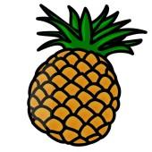 パイナップルの乾燥例