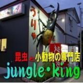 ジャングル・キング